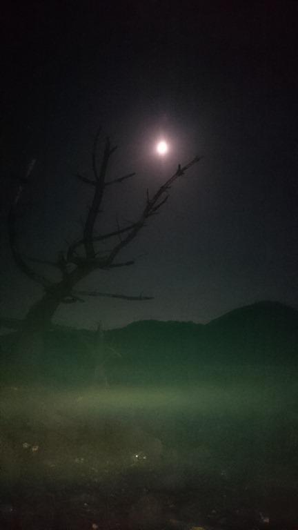 きれいな満月